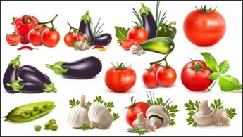 Peppers, eggplants, tomatoes, garlic, beans, cucumber, tomato vector ...