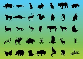 Animals,Elements,Silhouette