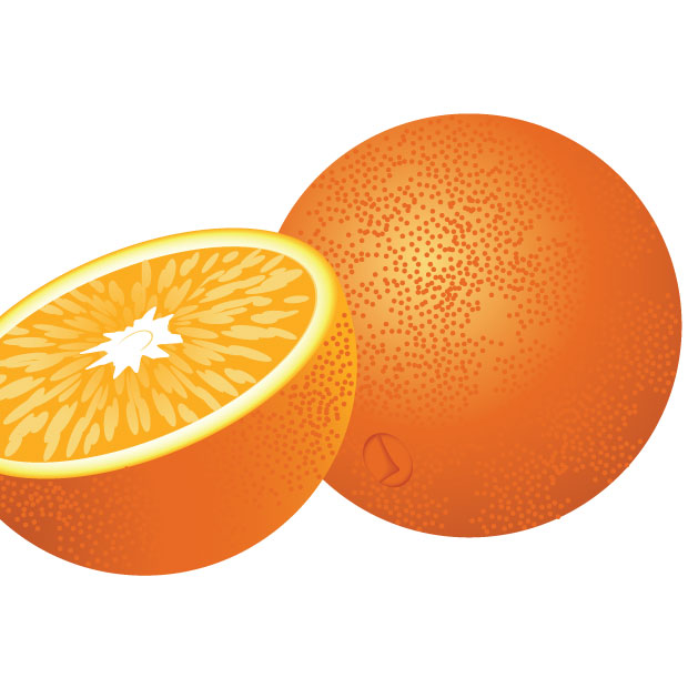 Orange Fruit Vector Fresh Orange Fruit vec...