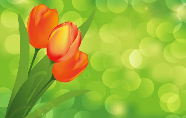 Beautiful Abstract Vector Background - Download Free Vector Art ...