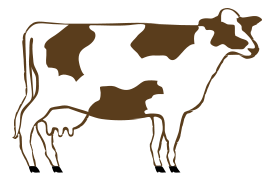 bovine report outline Just pick one of many cattle farm templates and themes to get started with cattle farm website template #40047 $64 get new web templates report and.
