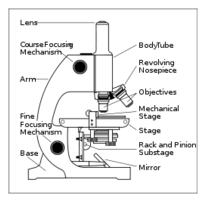 Free download of light microscope diagram labeled vector graphics mediaclip artpublic domainimagepngsvglab microscope with labels ccuart Image collections