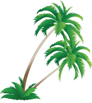 Palm tree 4 vector, free vectors  Vector.me